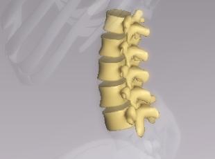幡ケ谷で腰痛、肩こりの改善満足度No.1!アメリカ式論理的整体で関節の動きを改善